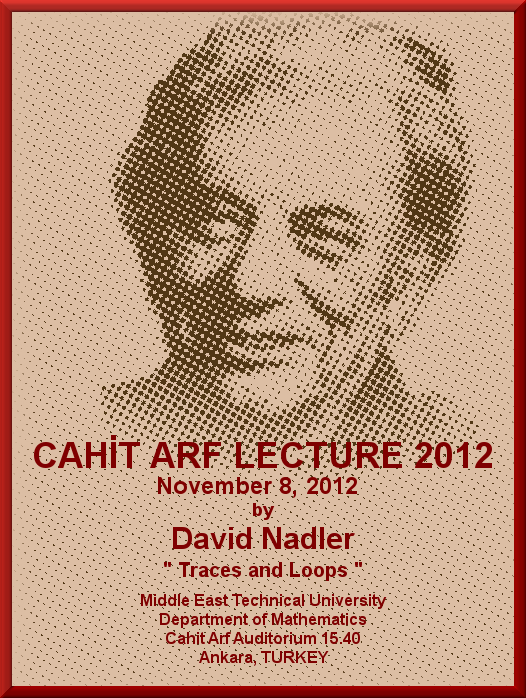Arf Lectures 2012